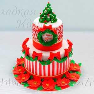 Новогодний торт 007331