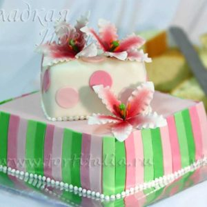 Торт из мастики 002705
